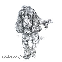 pen and ink dog portrait