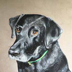 oil painting of black labrador
