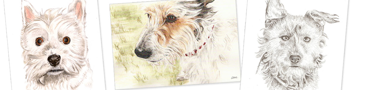 terrier portraits